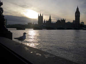 loneliness counselling in London, Camden, Kings Cross, beat loneliness, cure loneliness, lonely in london, alone in london, loneliness in london, Author: Nick Page, Title: London Sunset